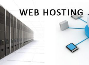 Top Security Features for Web Hosting